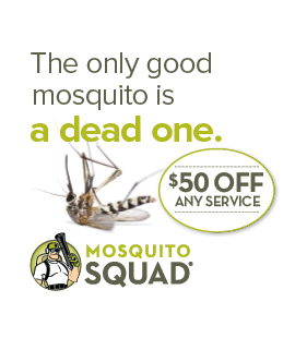 Mosquito Squad - Sidebar Banner 2