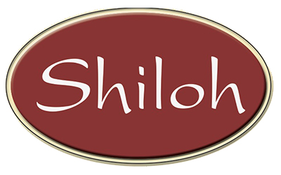 Smith Marketing - Shiloh - Logo